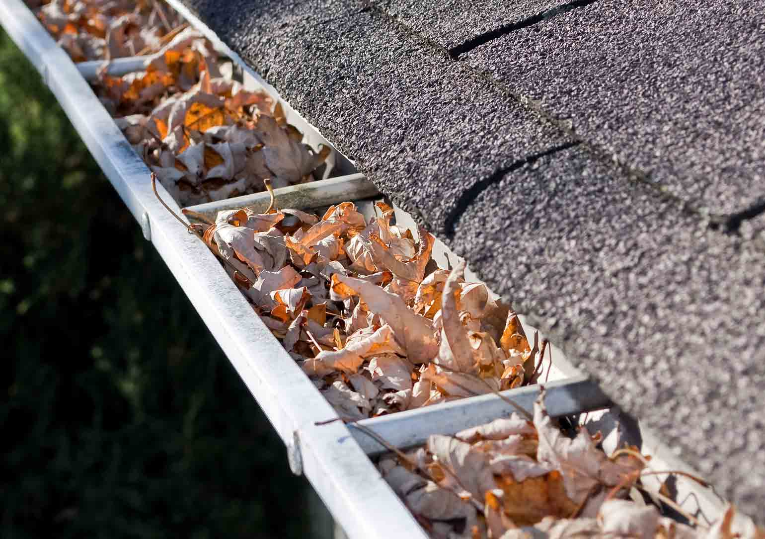 Blocked guttering in an office? Professional Gutter Cleaning services in Northampton