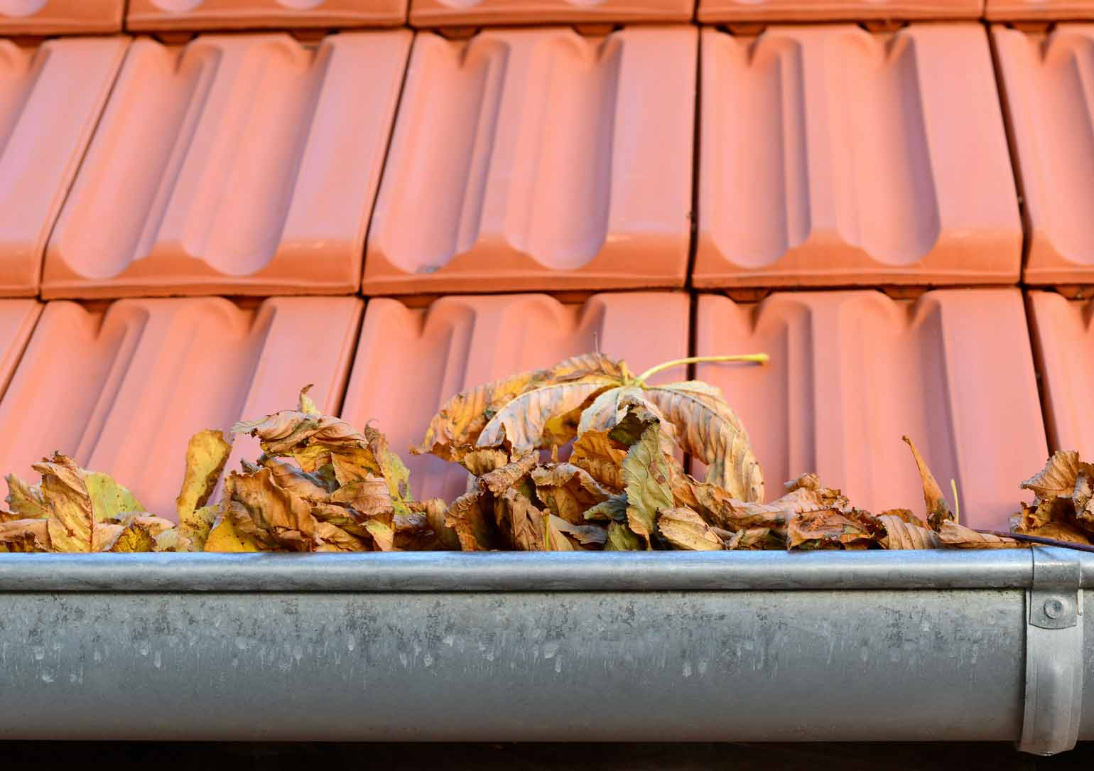 Rental Property Gutter Cleaning in Northampton